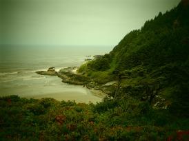 Oceanside beauty