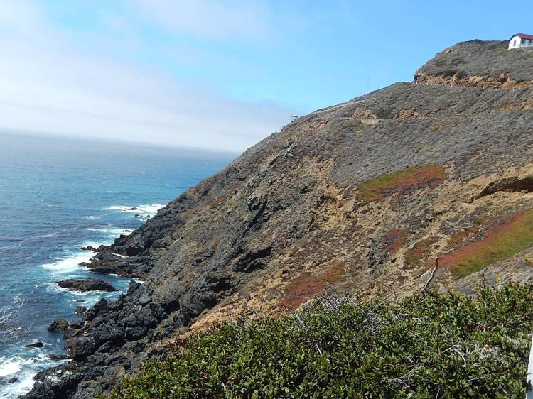 Along Big Sur Coast